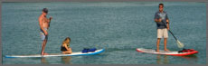 Stand-Up Paddleboard rentals Florida Keys Marathon Key